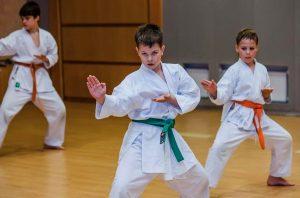turkiye karate federasyonu ve organizasyonlari